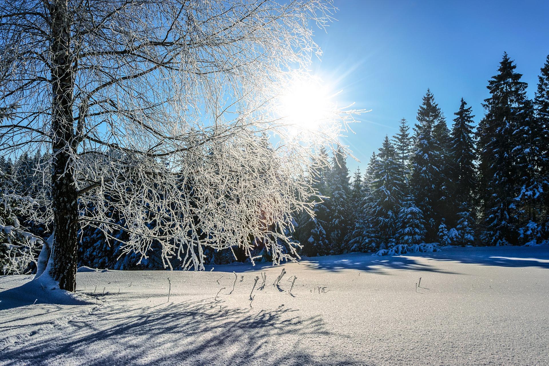Winter Phantasiereise Fur Kinder Susse Traumreise Zum Vorlesen