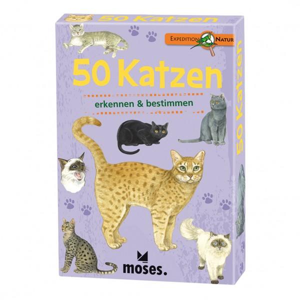 Kartenset 50 Katzen